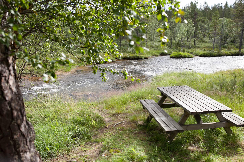 Kesäinen maisema. Taustalla näkyy joki. Edessä puinen pöytä ja penkit.
