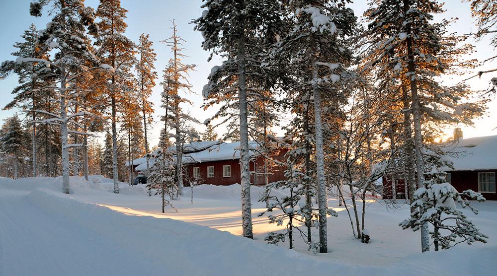 Talvinen maisema. Puiden takana näkyy punainen matala rakennus.